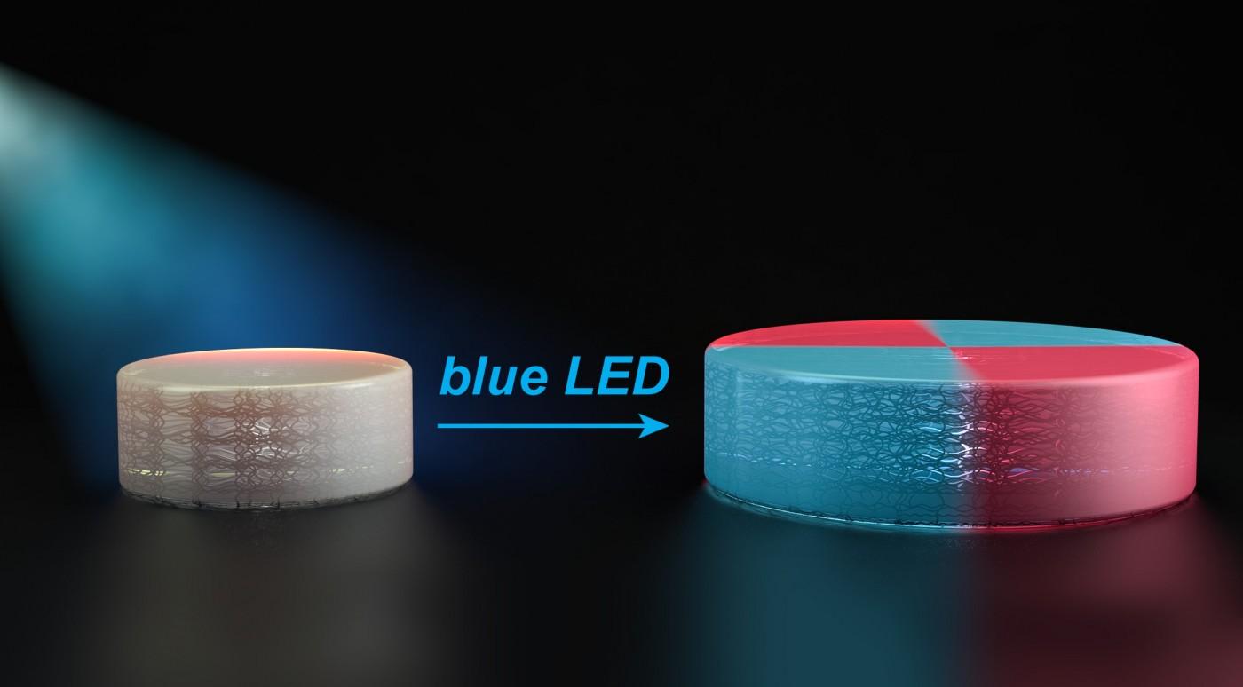 印錯不用再砍掉重鍊!麻省理工開發出可重新塑形的3D列印技術