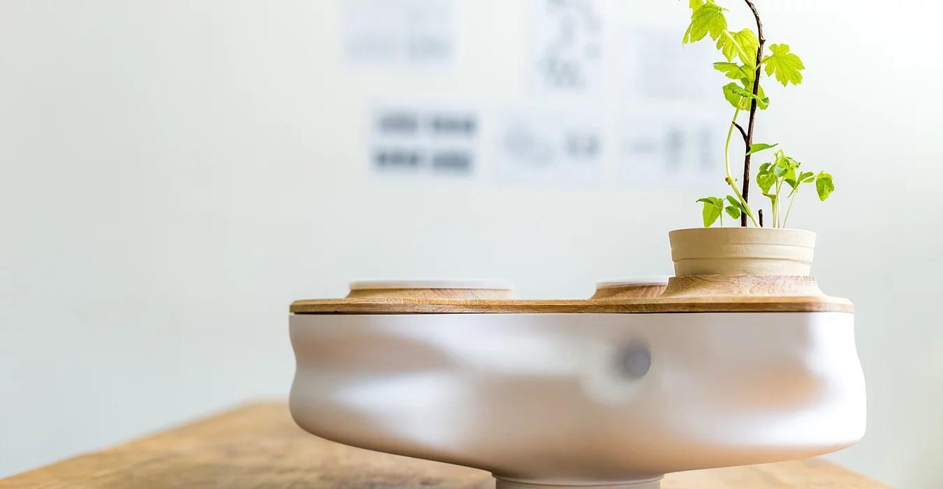蚯蚓出頭天!台灣新創 Biovessel 讓剩食廚餘華麗轉身 - 華安 - ceo.lin的博客