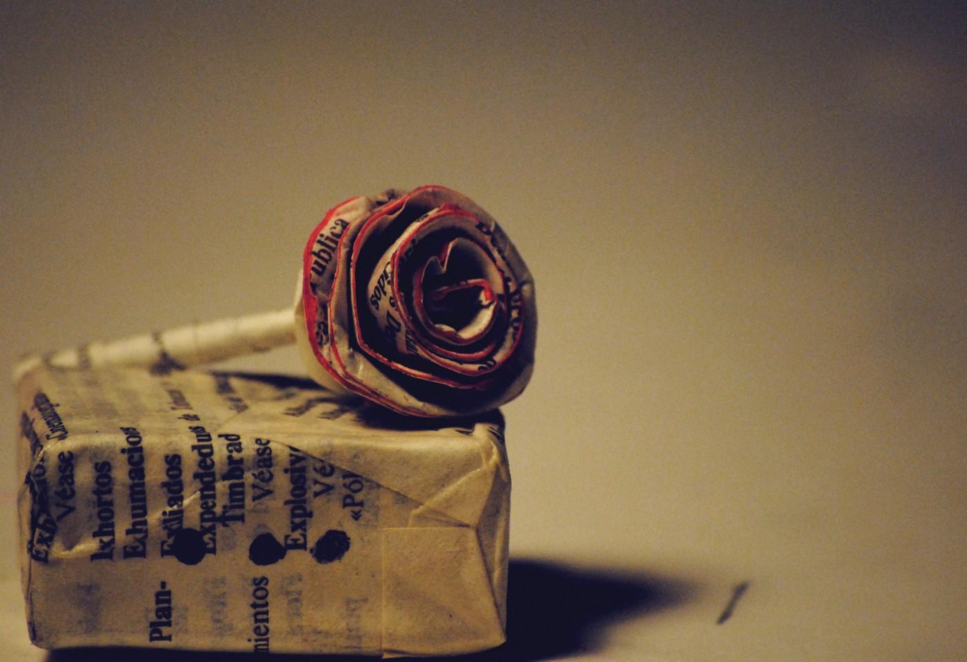 效法小王子,創業者你馴服自己的玫瑰了嗎?