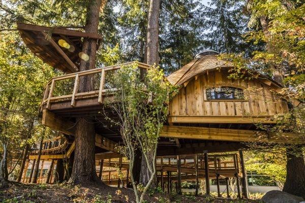 來去樹上工作吧!微軟為員工打造了樹屋辦公區