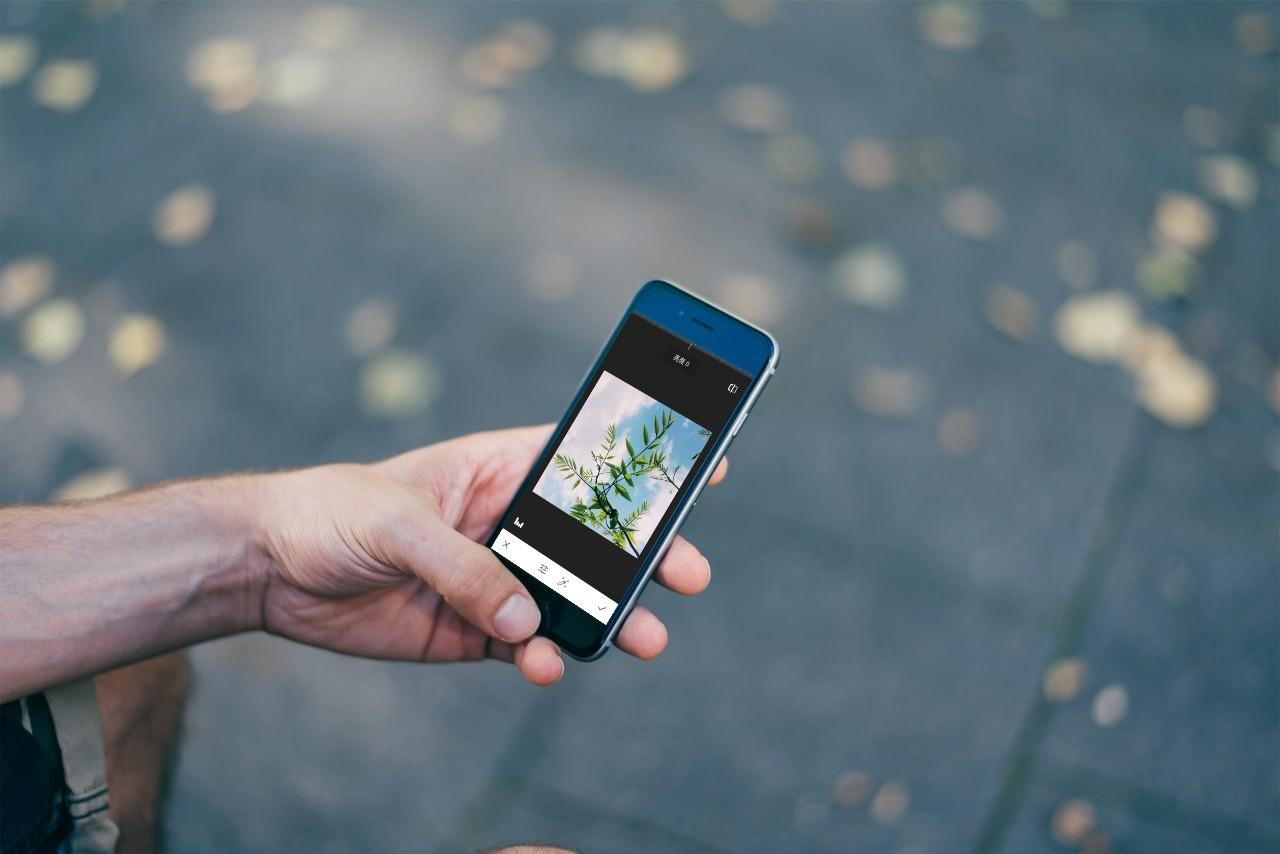 這些App,讓你的照片美到飛起來