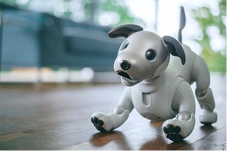 從愛寶的殞落與重生,看機器寵物的未來