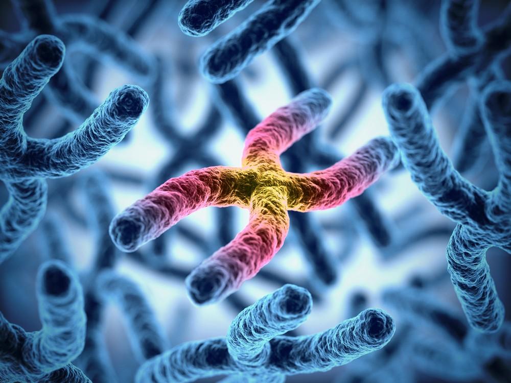 用基因編輯技術做出「發光狗」!揭密遊走法律邊緣的基因駭客,下一步要自製疫苗?