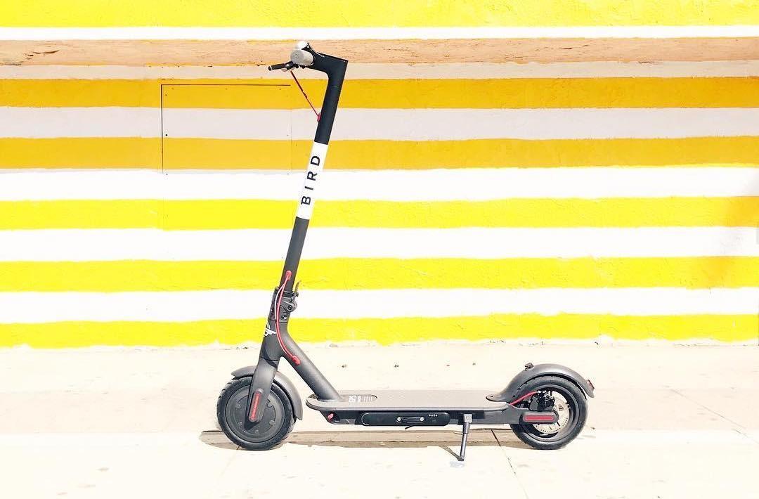 一年誕生兩隻獨角獸Lime、Bird,共享電動滑板車商業模式可行嗎?