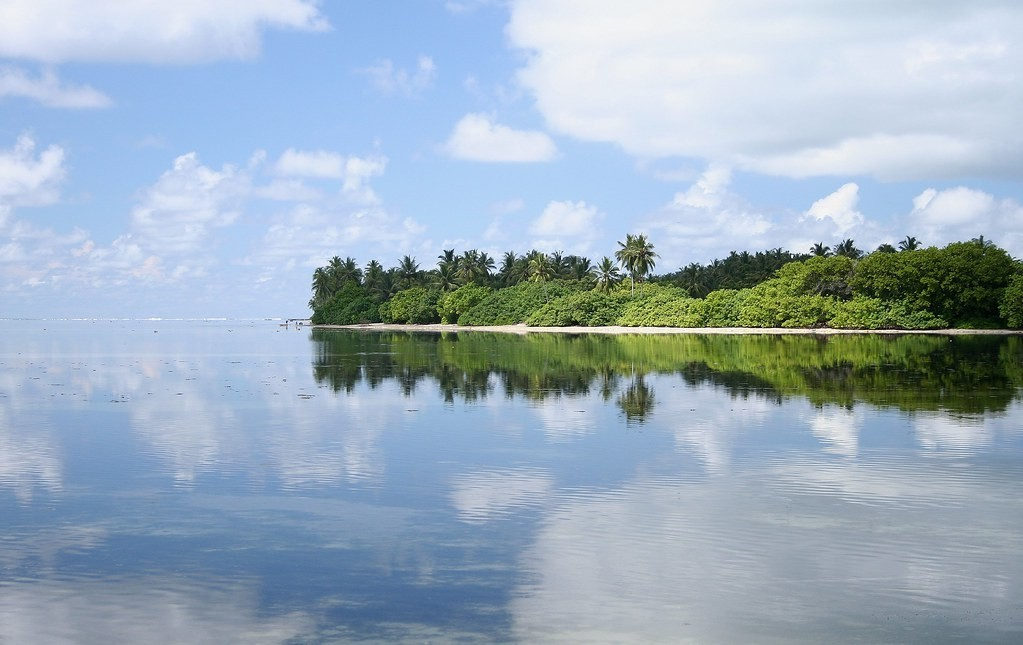 挽救下沉的馬爾地夫,MIT科學家想讓小島「自己長大」