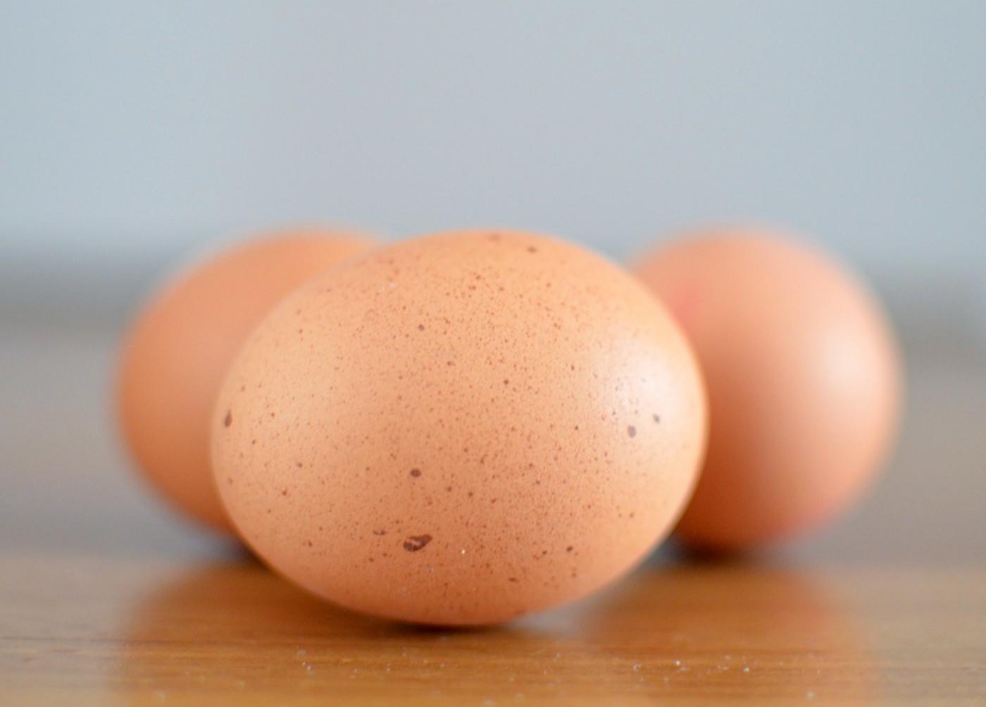每小時產38萬顆!台灣第一座世界級蛋品廠動工,引入日本哪5大專業技術?