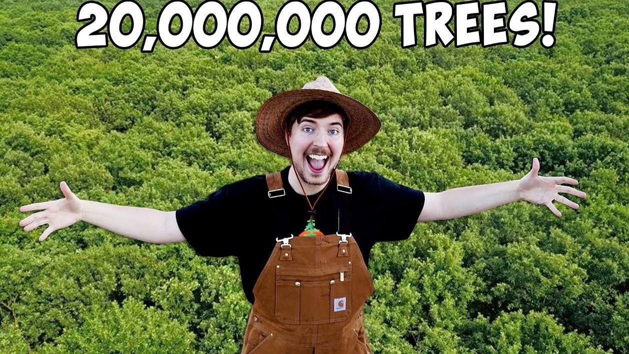 56天募到6億元!21歲YouTuber發起網紅植樹計畫,為何科技名人都相挺?