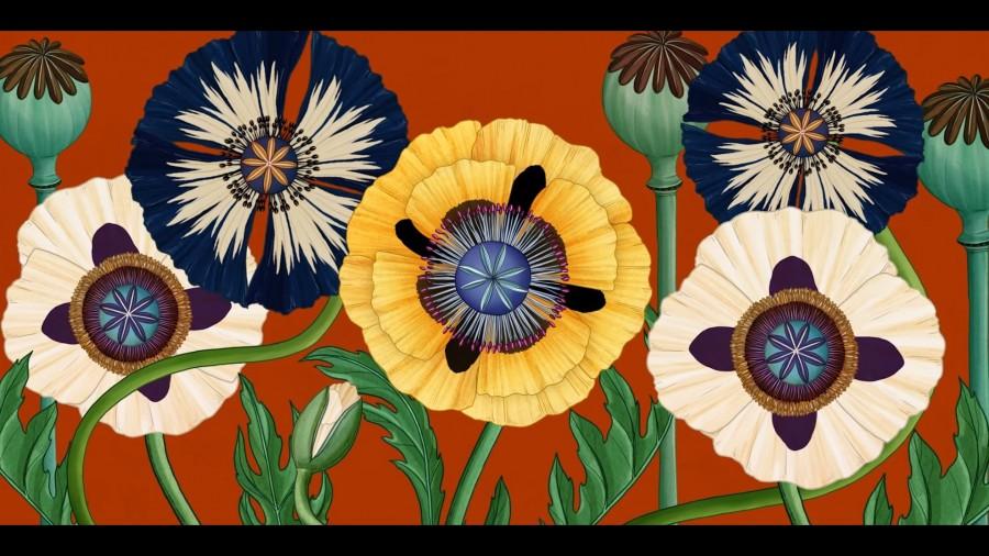 植物動畫_Story of Flowers_05.jpg