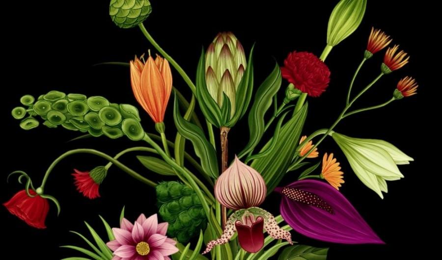 Story of Flowers03.jpg