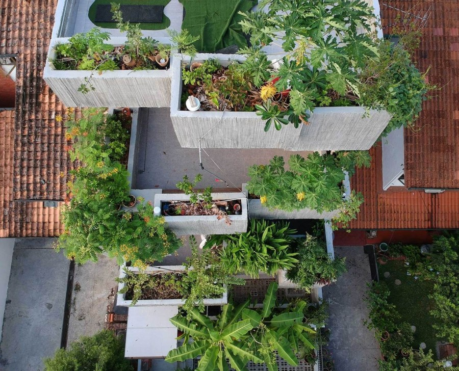 Planter Box House 05.jpg