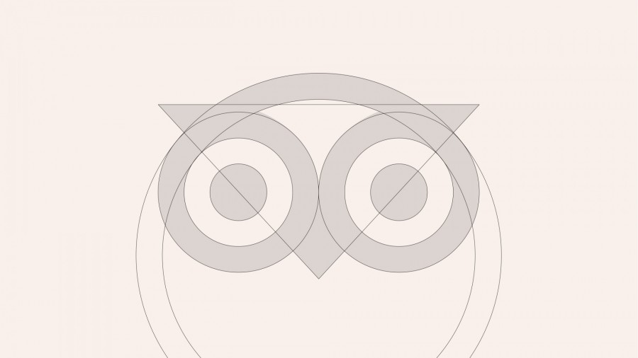"img 1582262531 17492@900 - 猫头鹰变清爽!TripAdvisor 新款""视觉识别设计""亮相:动画、logo、颜色、字体全都好可爱"
