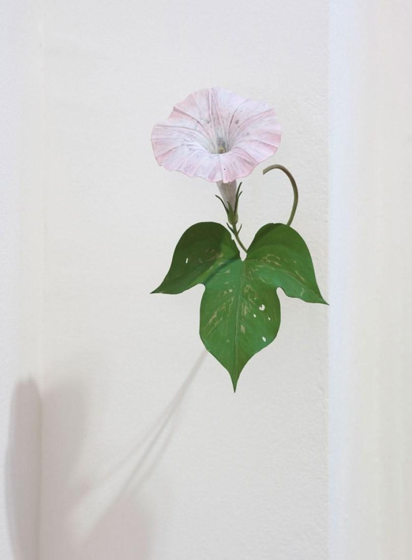 Yoshihiro Suda_木雕植物_20.jpg