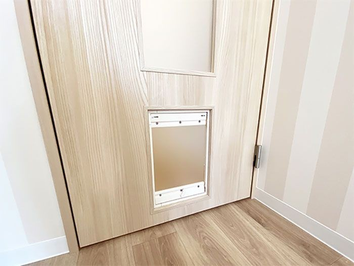 "img 1589786179 99955@900 - 最""猫性化""的公寓!玻璃猫咪步道、木质猫跳台,日本打造猫奴专属公寓"