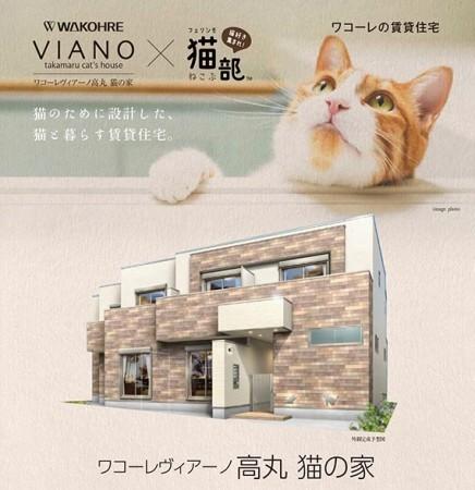 "img 1589786203 26615@900 - 最""猫性化""的公寓!玻璃猫咪步道、木质猫跳台,日本打造猫奴专属公寓"