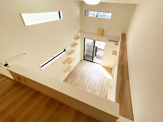 "img 1589786206 42451@900 - 最""猫性化""的公寓!玻璃猫咪步道、木质猫跳台,日本打造猫奴专属公寓"