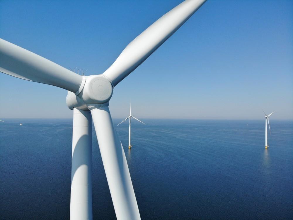 鳥會不會撞風機?彭啟明聯手日本氣象協會,展開3年台離岸風場鳥類調查