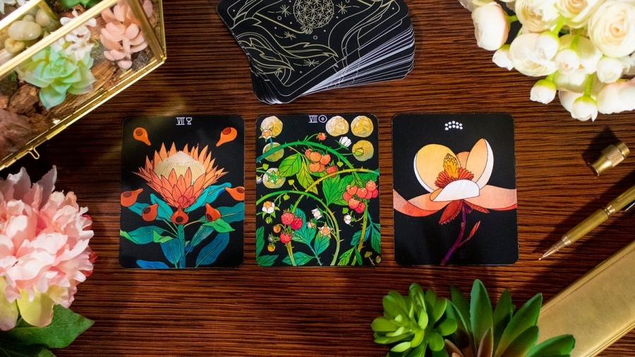 img 1592883542 66310@900 - 手绘植物跃上塔罗牌!78 张 BOTANICA 插画以绝美植物姿态,做你的解语花