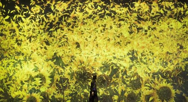 圖6 東京台場展出無限繁衍的生命Proliferating Immense Life(圖片提供tea