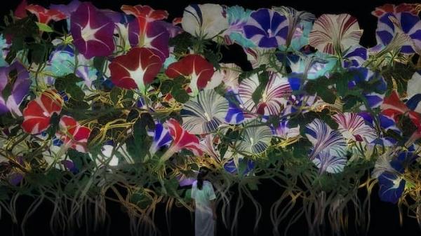 圖7 東京台場展出無限繁衍的生命Proliferating Immense Life(圖片提供tea