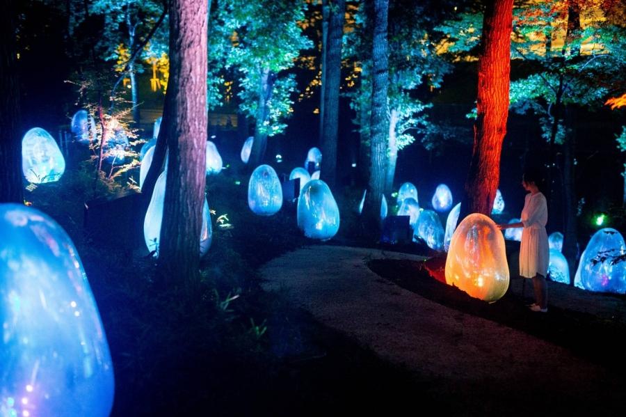 龍貓故鄉的 teamLab 體驗!東京近郊《橡子森林》常設展,大自然裡的沉浸式體驗
