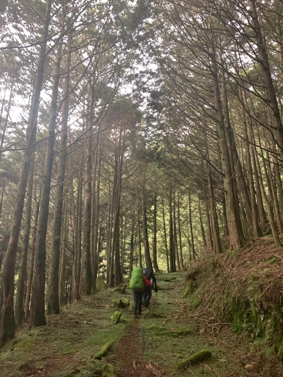 台灣最美山徑之一「西巒大山」:無人知曉的夏日清晨,在廢墟末日絕景中醒來