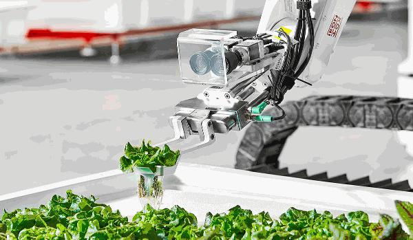 圖2-Iron-Ox的機器人包辦種植、移植植物等細節。圖片來源:Iron-Ox官網。.png