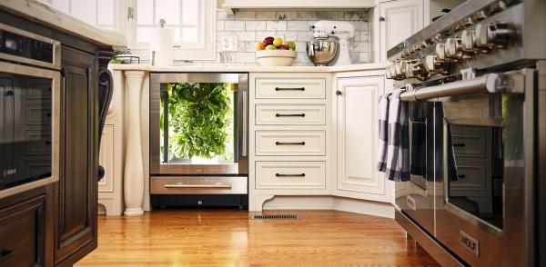 圖3-Heliponix-LLC開發的智慧花園設備GroPod,就像廚房中的家電一樣。圖片來源:He