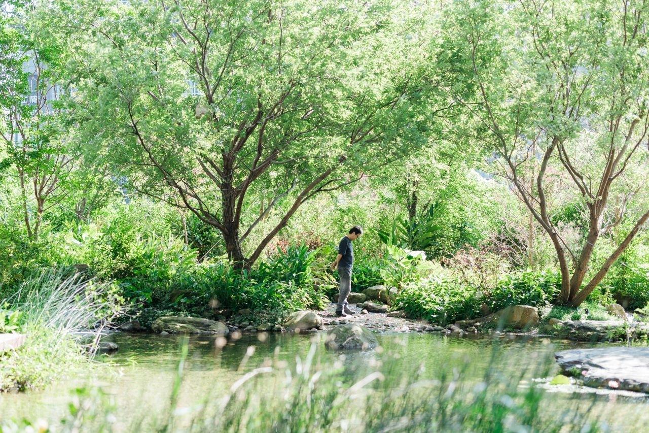 專訪 半畝塘創辦人江文淵: 走訪都市造山計畫,讓自然回到都市,讓人走進自然